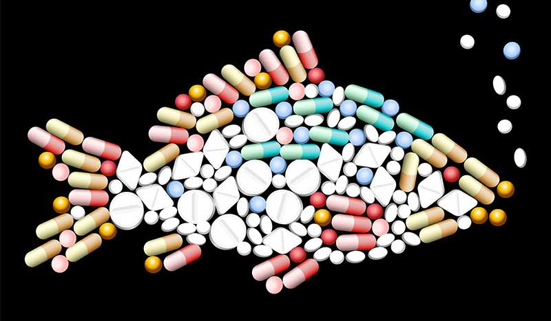 دولت بریتانیا به دنبال کاهش استفاده از آنتی بیوتیک در محصولات کشاورزی است