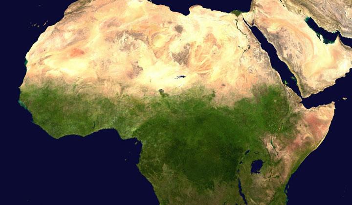 همایش بازار بزرگ شرق آفریقا با همکاری سازمان توسعه تجارت
