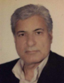 حسن احمدی جزنی