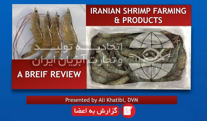 حضور در وبینار فرصت های سرمایه گذاری و توسعه صادرات ایران و پرتغال: ارائه گزارش از ظرفیت ها و توانمندی ها توسط آقای دکتر خطیبی