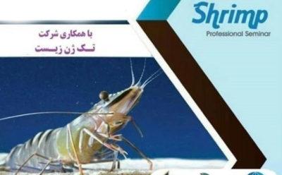 برگزاری وبینار تخصصی استفاده از پروبیوتیک در تکثیر و پرورش میگو
