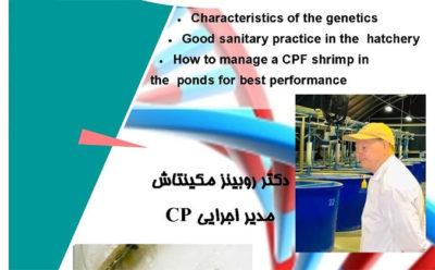 دکتر مکینتاش مدیر اجرایی شرکت CP با فعالان صنعت میگوی ایران سخن می گوید