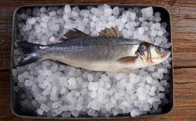 """اطلاع رسانی در خصوص ابلاغ دستورالعمل """"انجمادزدایی کنترل شده ماهی و میگو"""""""